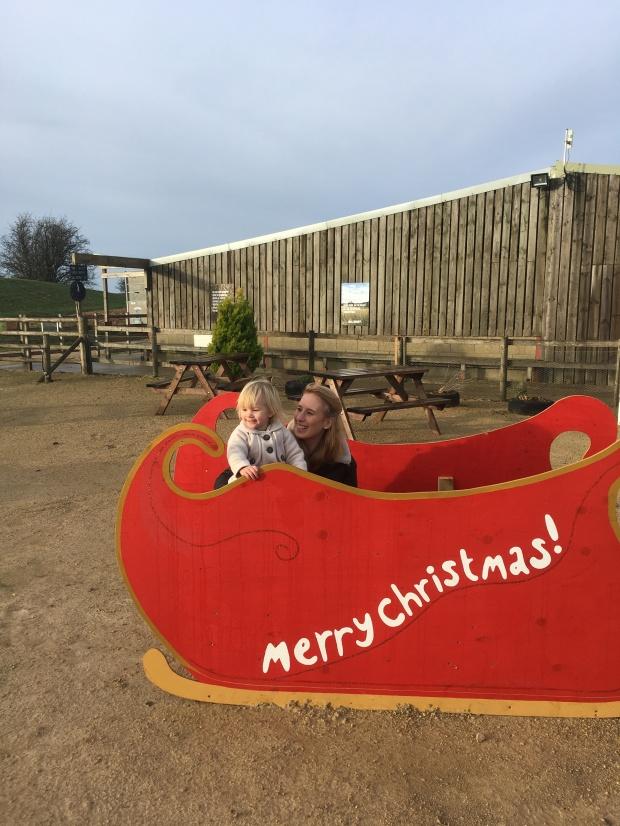 Cotwold Farm Park Santa Sleigh